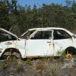 Otkup udarenih automobila